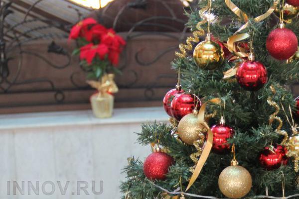 Опубликована программа мероприятий на Новый год и каникулы 2018 в Перми