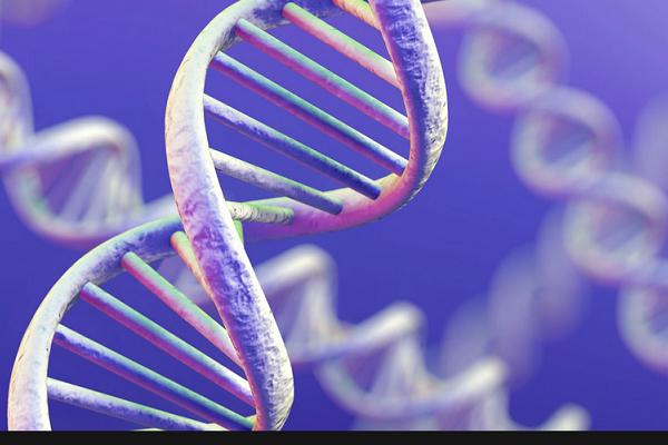 Ученые: «гены смерти» уменьшают жизнь на1-4 года у 70 процентов населения