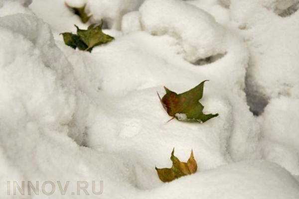 ВГидрометцентре назвали причину позднего снега в российской столице