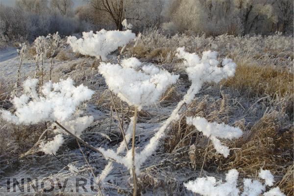 Впустыне Сахаре выпал снег